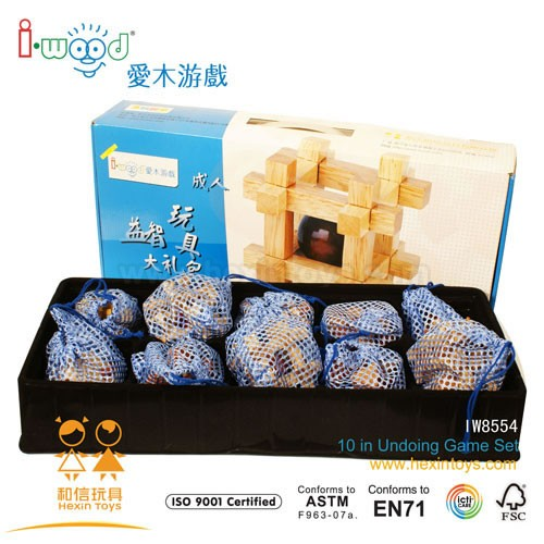 10 in1 brain game set » IW8554